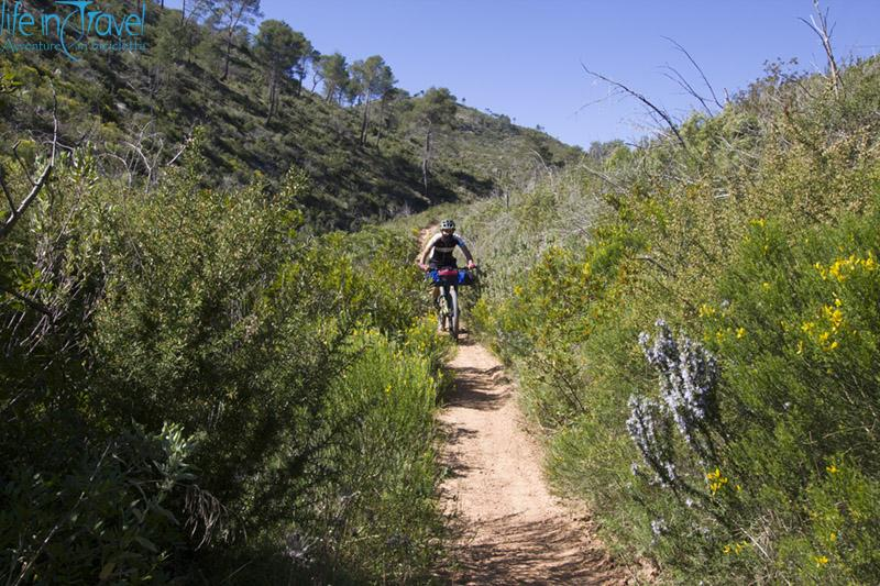 single trail ibiza
