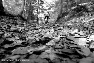 Nel bosco in mountain bike